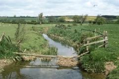 Barton Hill Beck 1