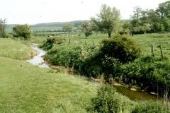 Barton Hill Beck 3