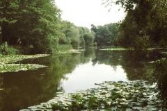 Claxton Brick Ponds 1
