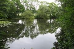 Claxton_Pond