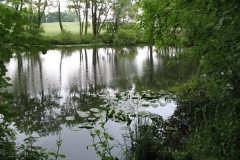 Claxton_Pond_2