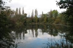 Hemingbrough_Pond_2