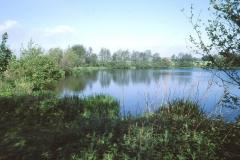 Park View Lake 1