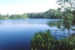 Park View Lake 2