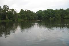 Park_View_3