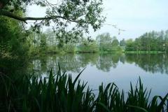 Park_View_Titus_01