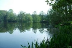 Park_View_Titus_04