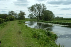 Pocklington_canal_web_02