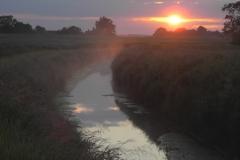 Foss at Dawn
