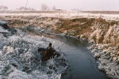 River Seven