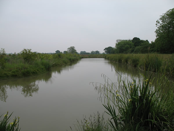 Laybourne Lakes