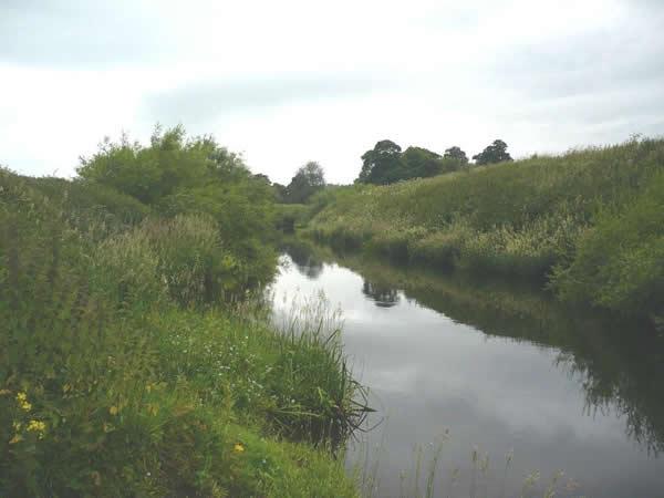 YDAA - River Nidd - Tockwith