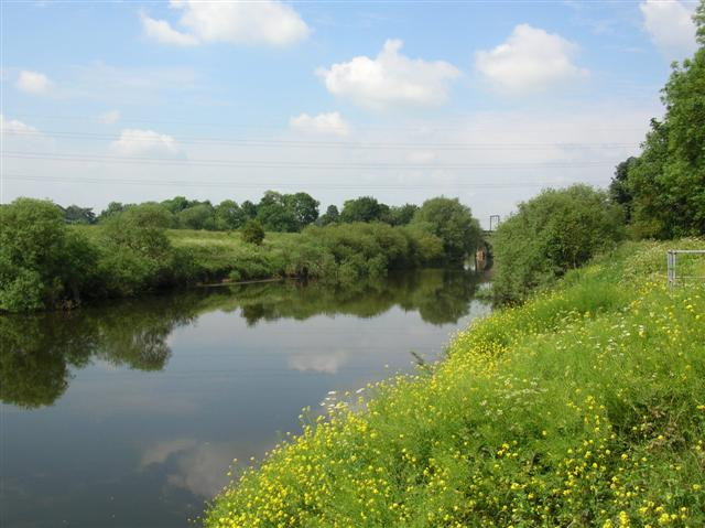 YDAA - River Ouse - Poppleton 'Sellars'
