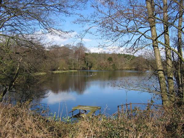 YDAA - Park View Lake