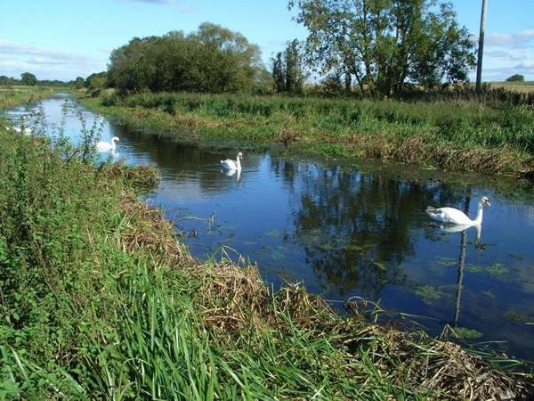 YDAA - Pocklington Canal