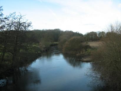 YDAA - River Derwent - Howsham