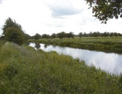 YDAA - River Derwent - Sutton