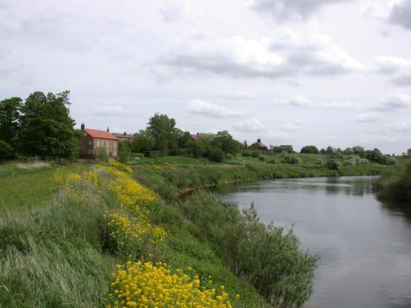 YDAA - River Ouse - Beningbrough